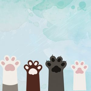 Cute Cat Paw Play Mat/ Rug / Carpet for Kids Room